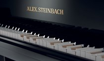 Alex Steinbach iQ Player