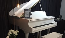 Alex Steinbach Grand Piano
