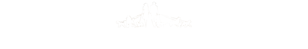 Lewis and Jenny's Designer Dogs